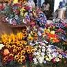 Sulmona a Pasqua, tra riti religiosi e confetti