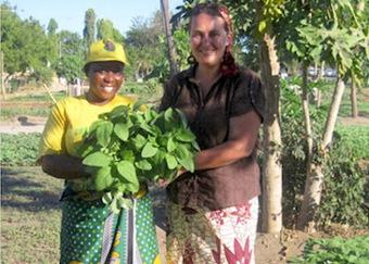 Timbuktu Chronicles: Tanzania Food Gardening Network | Vertical Farm - Food Factory | Scoop.it