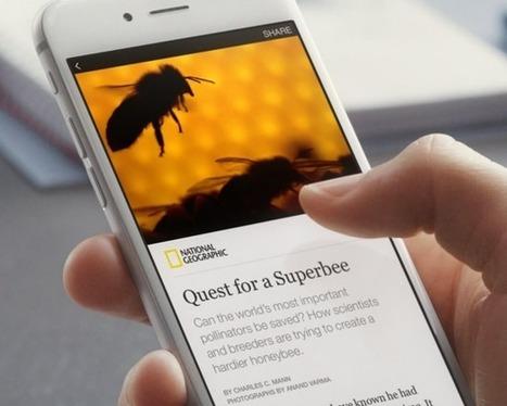 Instant Articles Facebook untuk mempercepat akses | Social Media Epic | Scoop.it