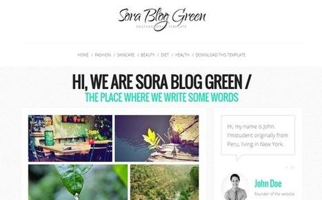 Sora Blog Green | Personalización de Blogs Gratis!!! | Matamoros ~ Servicios | TOL | #DIRCASA - Automatización, Calor y Control | Scoop.it