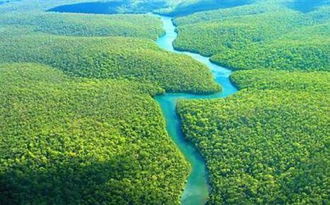 La región amazónica está protegida y conservada en un 84%: Minambiente | El Universal - Cartagena | Infraestructura Sostenible | Scoop.it