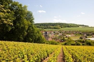 Undiscovered France: L'Aube En Champagne, undiscovered delight ! | Côte des Bar champagne | Scoop.it