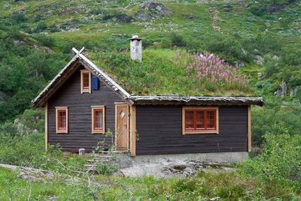 Une toiture végétalisée qui produit de l'électricité | biodiversité en milieu urbain | Scoop.it