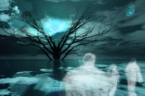 In Honor of Halloween...Day of the Dead...Dia de los Muertos:  A Journey Into Jung | Depth Psych | Scoop.it