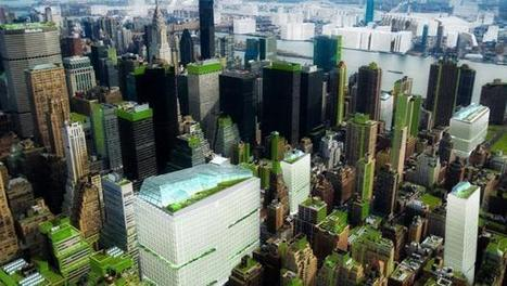 Researchers envision a fully sustainable New York City | Lateral Thinking Knowledge | Scoop.it