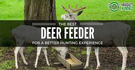 best deer feeders' in Hunting   Scoop it