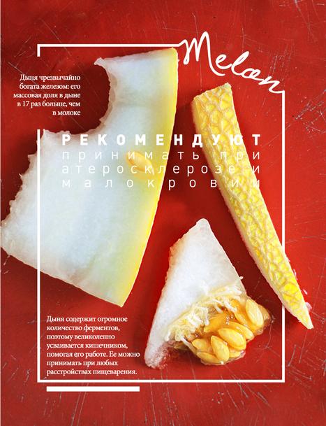 Kristina Razueva's Food Posters | Camel safari in Bikaner | Scoop.it