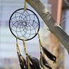EDUC5199: Indigenous Languages, Identity, and Education