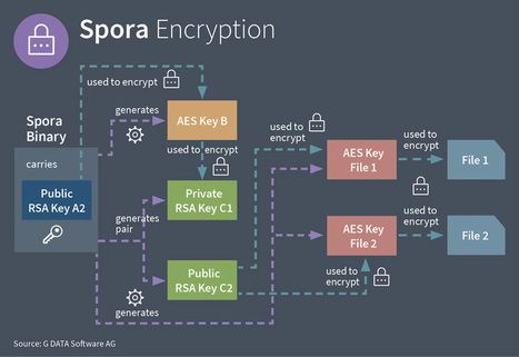 Spora - the Shortcut Worm that is also a Ransomware | d@n3n | Scoop.it