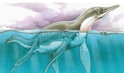 Resultado de imagen para Morrosaurus antarcticus