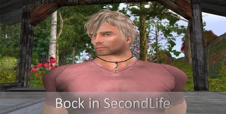 Bock in SecondLife: Art Exhibition Opening at Solace Island | Virtual Worlds and Online Education | Scoop.it