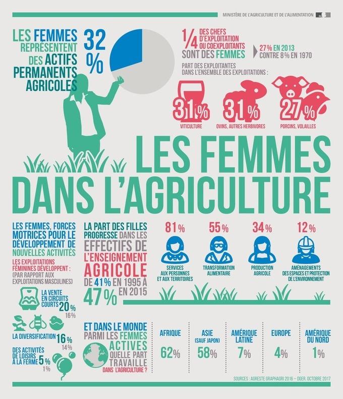 infographie : Les femmes = 32% des actifs en Agriculture