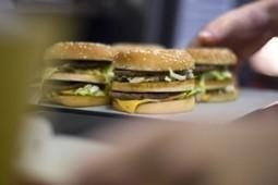 On mange mieux aux Pays-Bas qu'en France | Contrepoints | Nouveaux paradigmes | Scoop.it