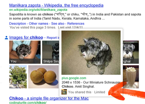 Google Search Gets Personal . . . | Social on the GO!!! | Scoop.it