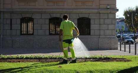 Zéro pesticides: mobilisation descollectivités franciliennes | Développement durable en ville - initiatives urbaines | Scoop.it