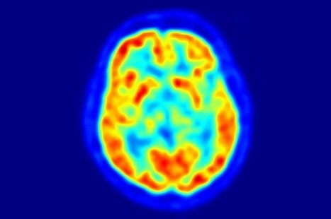 Common Science Myths That Most People Believe | IFLScience | Potpourri | Scoop.it