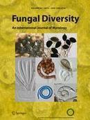 Molecular phylogeny, morphology, pigment chemistry and ecology in Hygrophoraceae (Agaricales) - Springer | fungi bacteria publications | Scoop.it