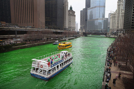 St Patrick's Day celebrated around the world – in pictures | Mrs. Watson's Class | Scoop.it