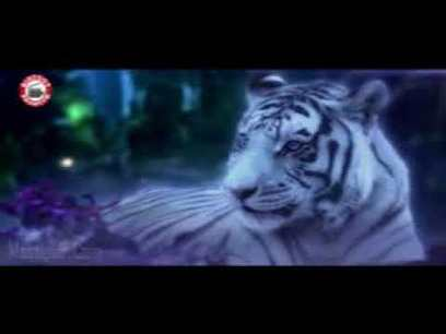 Roar - Tigers Of The Sunderbans full movie in hindi download free