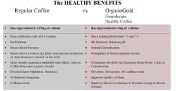 The Benefits of Ganoderma and Organo Gold | Organo Gold and Ganoderma | Dinner Recipes | Scoop.it
