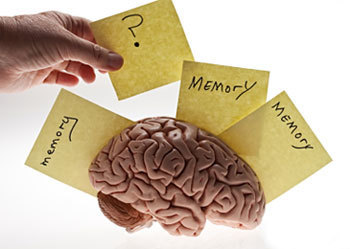 4 Things Most People Get Wrong About Memory | Observations, Scientific American Blog Network | Cognitive Science | Scoop.it
