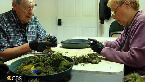 Marijuana sales mean new high for Garden City, Colorado: How windfall is revitalizing town of 300 | BloodandButter | Scoop.it