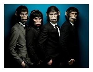 Les Monkey Crashers s'invitent aux soirées et prennent le contrôle - Lutetia : une aventurière à Paris   Paris Secret et Insolite   Scoop.it