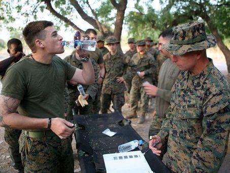 Malaria drug causes brain damage that mimics PTSD: case study | Veterans Affairs and Veterans News from HadIt.com | Scoop.it