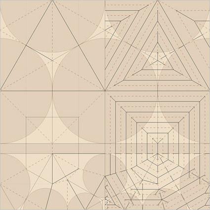 Encoding Process – Robert J Lang's Origami Crease Patterns | Dataisnature | Computational Design | Scoop.it