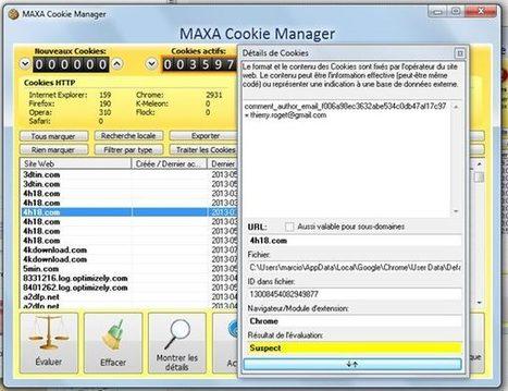 Maxa pour nettoyer vos cookies   Sky-future.net   Scoop.it