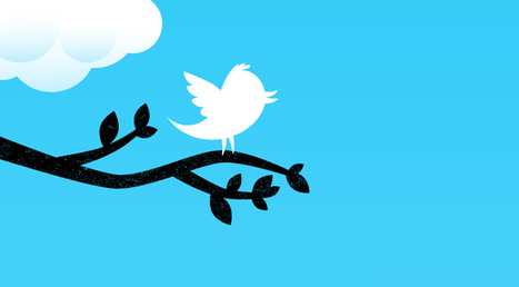 Twitter France se structure... | Music, Medias, Comm. Management | Scoop.it