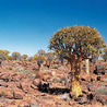 Phénoménale Namibie