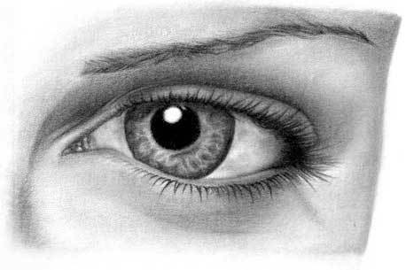 Eye Drawing Step By Step In Drawing And Painting Tutorials