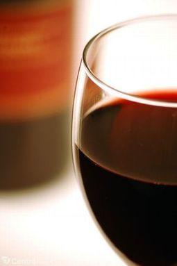 Une majorité de Français déguste le vin pendant le repas, les jeunes préfèrent l'apéritif | Oenotourisme en Entre-deux-Mers | Scoop.it