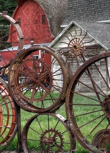 Looking Through Old Wagon Wheels