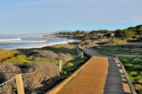 The Sunrise Illuminates The Path By the Beach In Cambria, California | Tourism Today & Tomorrow | Scoop.it