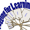 Verbal Literacy • Reading • Vocabulary