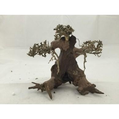 Aquarium Driftwood Drift Wood Bonsai Tree For