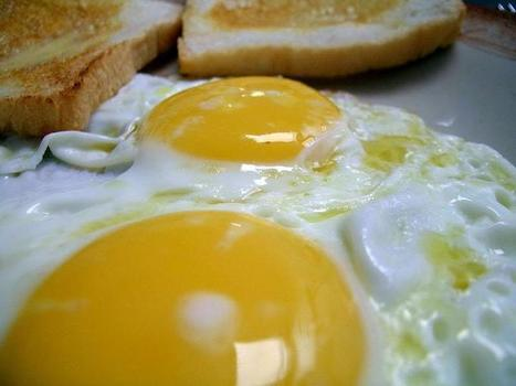 My heavy yolk | Flash in the Pan | Food and Nutrition | Scoop.it