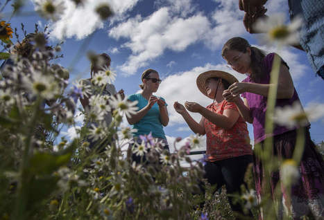 Oregon educators embrace school gardens<br/>as multidisciplinary teaching tool | School Gardening Resources | Scoop.it