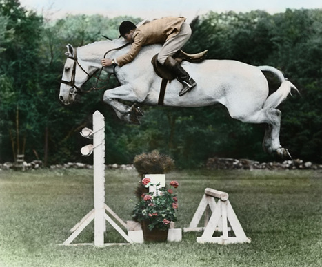 A must see:  Harry & Snowman | Equestrian Vacations | Scoop.it