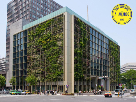Most Delicious Workplace Ever? This Tokyo Office Has Fruit Trees, Tomato Vines, And A Rice Paddy! | Vertical Farm - Food Factory | Scoop.it