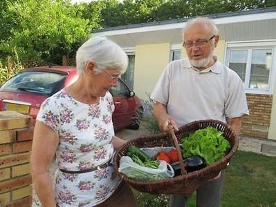 SAINTE-LUCE-SUR-LOIRE: Des paniers de légumes bio, au goût de solidarité | News from France | Scoop.it