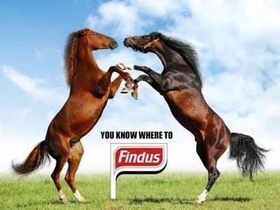 Le scandale Findus inspire la toile | Locita.com | Crisis communication | Scoop.it