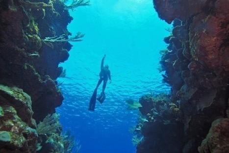 The Ultimate Breathtaking Dive | Scuba Diving Adventures | Scoop.it