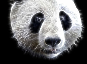 Are You Making These 7 Panda-Punishing ContentMistakes? | SEO Vietnam | Scoop.it