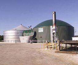 WELTEC BIOPOWER Develops Green Energy in France | Sustain Our Earth | Scoop.it