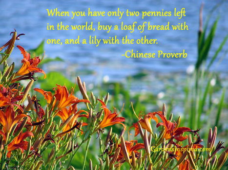 A Chinese Proverb | The Muse | Scoop.it