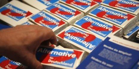 Allemagne : un sondage confirme un nouveau plus haut d'AfD | Allemagne | Scoop.it