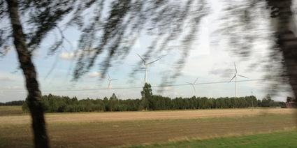 Wind Farm Bird Deaths vs Fossil Fuel & Nuclear Power Bird Deaths | Sustain Our Earth | Scoop.it